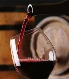 Κρασί Κόκκινο Sauvignon