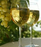 Οίνος Chardonnay